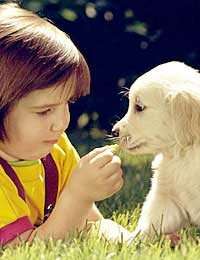 Kids Children Child Kids Pets New Pet