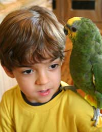 Children Kids Kids Pets Bird Bird Care