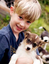 Kids Children Pets Pet Care Family Pet